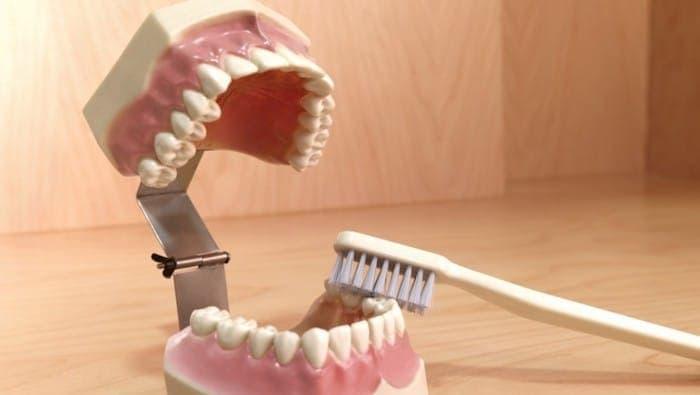 Precio limpieza dental 2021